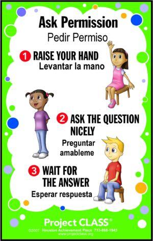 Ask Permission Lesson