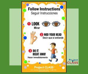 Seguir Instrucciones - Lección